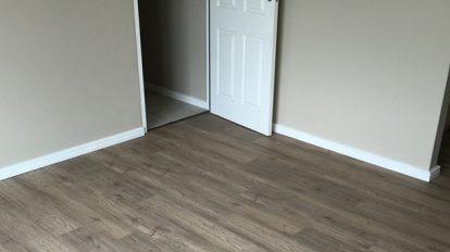 Empty Room Med Gray Vinyl